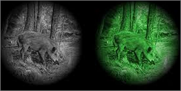 Vision nocturne Armasight by Flir binoculaire DISCOVERY x5 Gen 2+ tube QSi